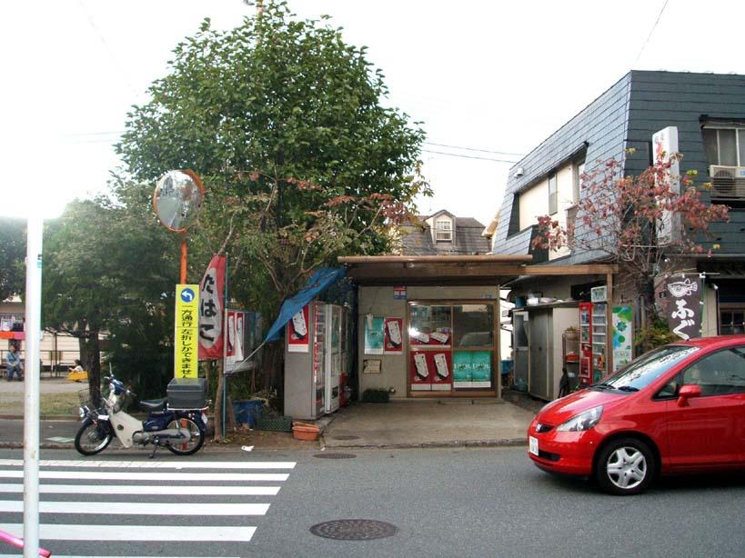 yoshizawasta2.jpg
