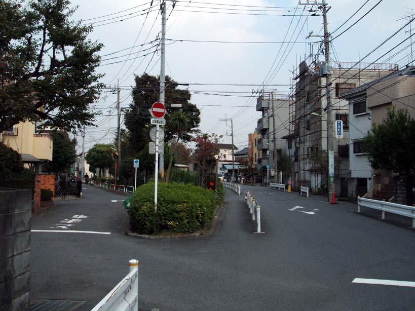 yoshizawasta1.jpg